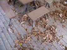 Chaise dans un plancher abandonné Photos libres de droits