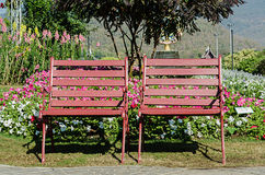 Chaise de fer dans un jardin vert Photographie stock libre de droits