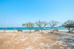 Chaise de plage en bois d'été Image stock