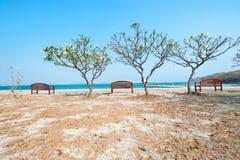 Chaise de plage en bois d'été Photo libre de droits