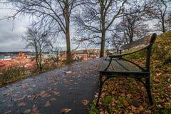 Chaise en automne Image libre de droits