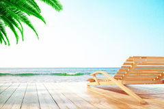 Chaise longue and palm tree Stock Photos