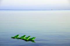 Chaise longue sul mare Immagini Stock