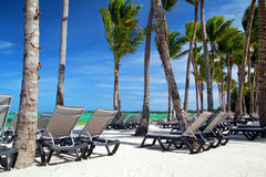 Chaise longues on tropical beach. With palms stock photos