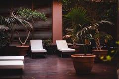 Chaise-lounge al salone della stazione termale! Immagine Stock