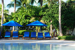Chaise Lounge Chairs by the Pool. Chaise Lounge Chairs by the Resort Pool stock images