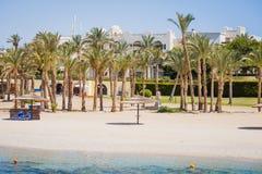 Chaise-lounge di Sun con gli ombrelli su una spiaggia Immagine Stock