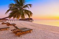 Chaise-lounge sulla spiaggia delle Maldive Fotografia Stock Libera da Diritti