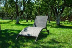 Chaise lounge on the sunny lawn. Chaise longue on a green grass on a sunny summer day in an apple garden stock photo
