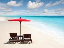 Chaise Lounges med solparaplyer royaltyfri bild