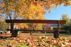 Chaise sous l'arbre pendant l'automne à Bâle Images stock