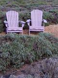 Chaises d'Adirondack de lavande dans le jardin de lavande Photos stock