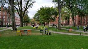 Chaises de yard de Harvard Image libre de droits