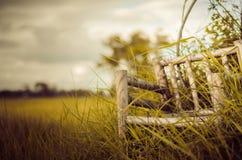 Chaises en bois en bambou sur le vintage d'herbe Photo libre de droits