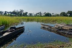 Chaises en plastique dans des canoës de pirogue de makoro, delta d'Okavango, Botswana photo stock