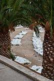 Chaises longues de plastique vides de plage Image libre de droits