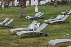 Chaises longues sur le plan rapproché de pelouse horizontal Image libre de droits
