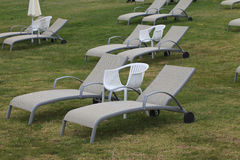 Chaises longues sur le plan rapproché de pelouse horizontal Images libres de droits