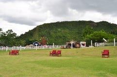 Chaises rouges sur le champ vert Photos stock