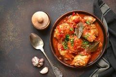 Chakhokhbili - chiken gulasz z czosnku i cilantro pietruszką wewnątrz Obrazy Royalty Free