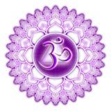 chakra查出的紫色sahasrara 免版税库存图片