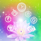 Chakra. Seven symbols of chakra with a flower lotus over colorful background with stars Stock Photography
