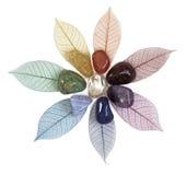 Chakra-Kristalle auf Blättern Stockfotos