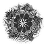 Chakra mandala icon symbol, flower floral, vector hand drawn. Illustration design concept sign royalty free illustration