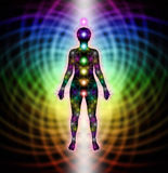 Chakra and Matrix Field Diagram Stock Image