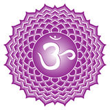 chakra sahasrara系列 图库摄影