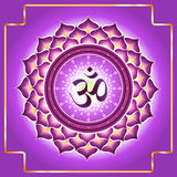 Chakra Sahasrara Royalty Free Stock Images