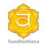 Chakra swadhisthana isolated on white vector Royalty Free Stock Photo
