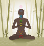 Chakra system stock illustration