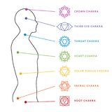 Chakra system of human body. Energy centers. Chakra system of human body chart. Seven chakra symbols. Location information of each chakra. Chakra centers Royalty Free Stock Photography