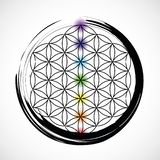 7 chakras и цветков жизни иллюстрация вектора