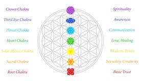 Цветок белизны описания Chakras жизни Стоковое Фото