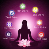 Chakras. Gunny illustration of Seven Chakras Royalty Free Illustration