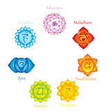 Chakras icons . Concept of chakras used in Hinduism, Buddhism and Ayurveda. For design, associated with yoga and India.  Stock Image