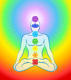 Chakras Icons Rainbow Man Royalty Free Stock Images