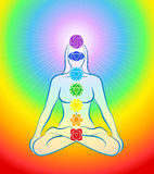 Chakras Icons Rainbow Woman Stock Photos