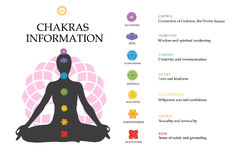 Chakras information. Isolated minimalistic icons. Stock Photos