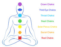 Chakras Man Description English Royalty Free Stock Image