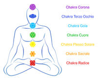 Chakras Man Description Italian Stock Photos