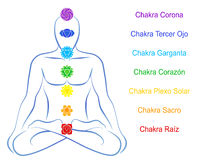 Chakras Man Description Spanish Royalty Free Stock Images