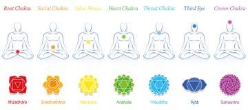Chakras sieben sanskritische Mann-Farben vektor abbildung
