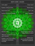 Chakras-Symbole mit den Bedeutungen infographic Stockbild