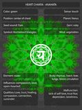 Chakras symbols with meanings infographic. Vector illustration Stock Images