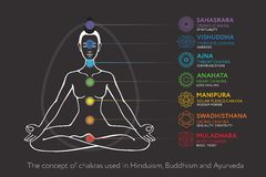 Chakras system of human body - used in Hinduism, Buddhism and Ayurveda Stock Image