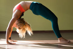 Chakrasana yoga pose Stock Images