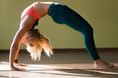 Chakrasana yoga pose Stock Images